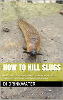 How To Kill Slugs From Beer Traps To Nemotodes Methods