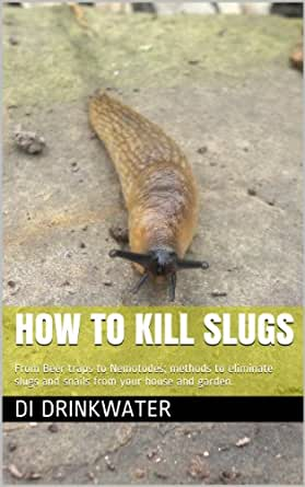 how to kill slugs from beer traps to nemotodes methods to eliminate slugs and snails from your