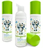 Babyganics Alcohol-Free Foaming Hand Sanitizer, Fragrance Free, On-The-Go, 50 ml (1.69-Ounce), Pump Bottle (Pack of 3)