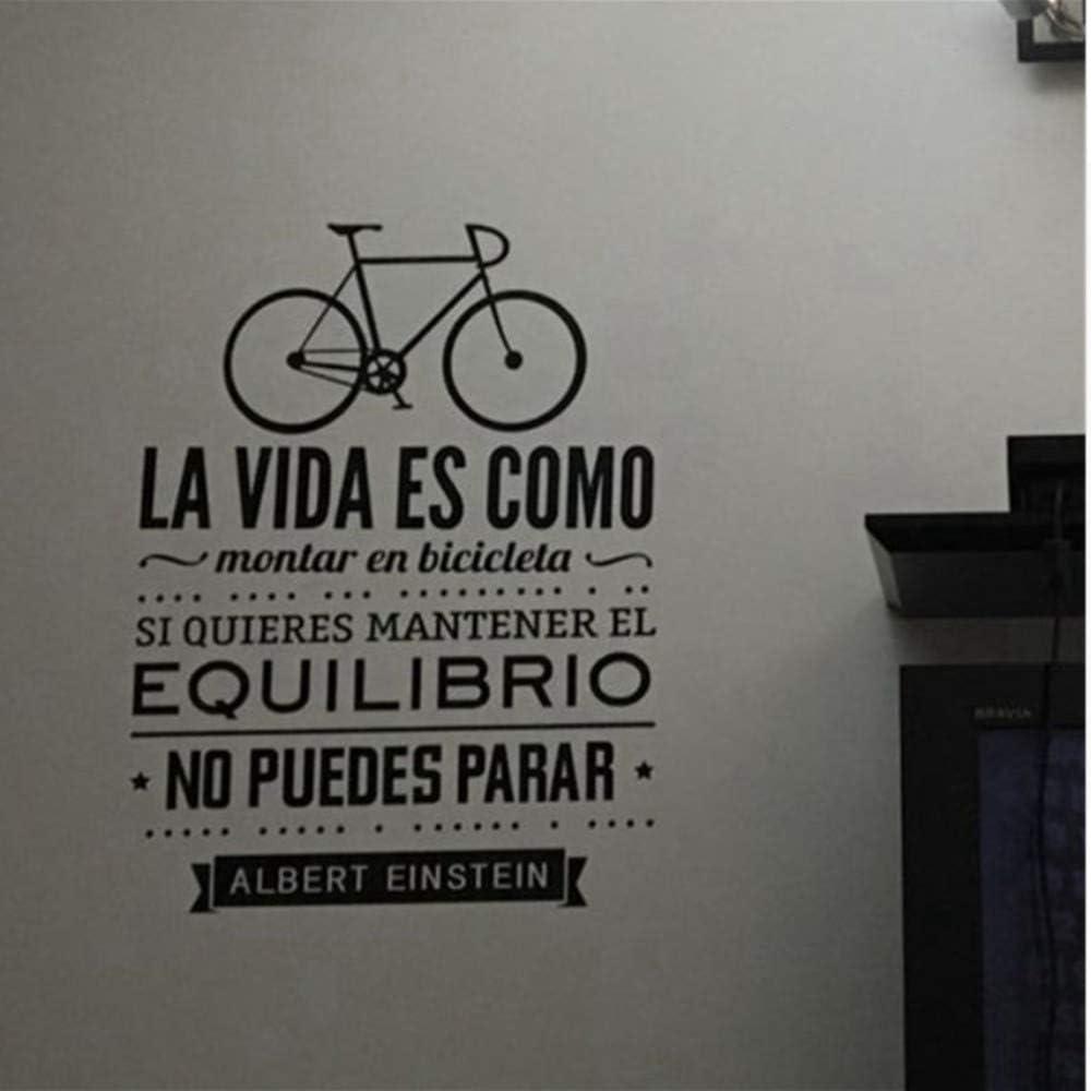 Dalxsh La Vida Es Como Andar En Bicicleta Con Las Reglas De La ...
