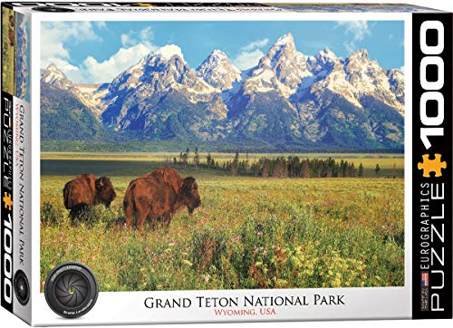 EuroGraphics Grand Teton National Park Photography by Steve Hinch 1000-Piece Puzzle