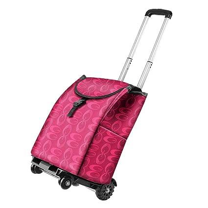 Amazon.com: Wagons Carrito de la compra plegable Mini ...