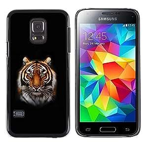 Be Good Phone Accessory // Dura Cáscara cubierta Protectora Caso Carcasa Funda de Protección para Samsung Galaxy S5 Mini, SM-G800, NOT S5 REGULAR! // Tiger Portrait Jungle Big Cat W