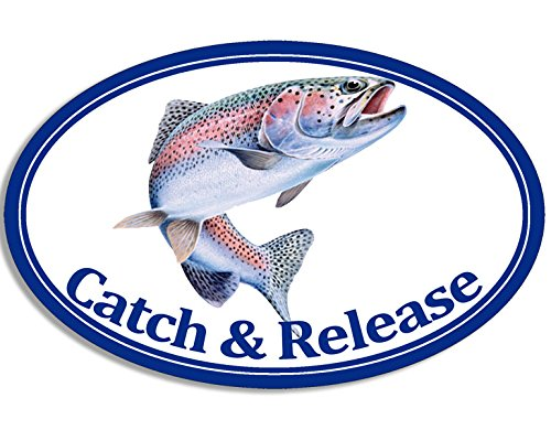 American Vinyl Oval Rainbow Trout Catch and Release Sticker Fish Fishing