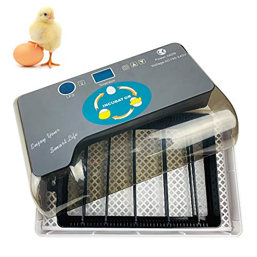 Decdeal Digital Egg Incubator Automatic Eggs Hatcher with Eggtester Automatic Egg Turning 12 Eggs Poultry ()