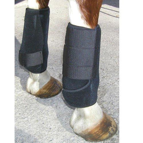 Intrepid International All Around Sport Horse Boots, Black, Medium