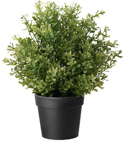 Ikea Artificial Potted Plant, Thyme, 9.5 Inch by IKEA