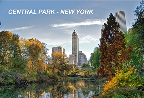 New York USA United States Fridge Refrigerator Magnets (City: Central Park #C5) (Fridge Magnets Usa Cities compare prices)
