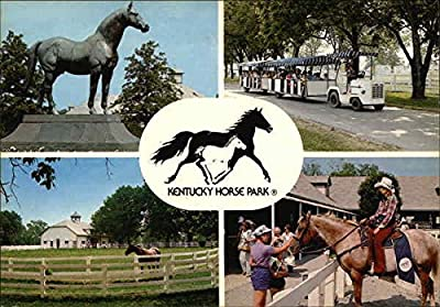 Kentucky Horse Park Lexington Original Vintage Postcard