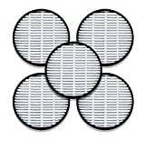 FitAir H13 HEPA Filter 5 Pieces for One Pack