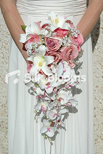 Amazon Pink Cascading Bouquet Baby Pink Roses White Orchids