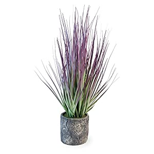 Boston International Decorative Grass in Cement Container Pot, Purple 42