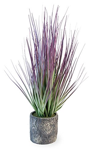 Boston International Decorative Grass in Cement Container Pot, Purple