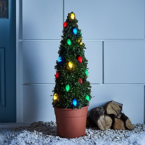 20 Multi Colored C9 Style LED Outdoor Battery Operated Christmas String - Lights Xmas C9