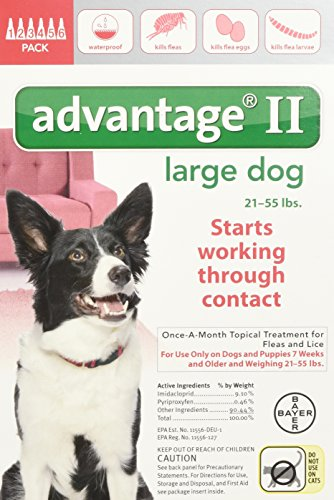 Bayer Advantage Large 55 Pound 6 Month product image