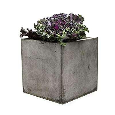 Repose Cubo Succulent Planter, Large