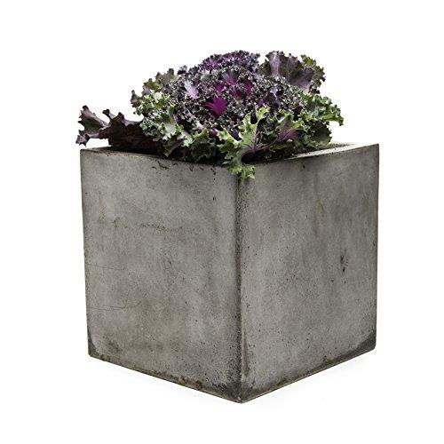large cement planters. Repose Cubo Succulent Planter, Large Cement Planters