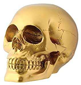 Gold Skull Head Collectible Skeleton Decoration Figurine Statue Model