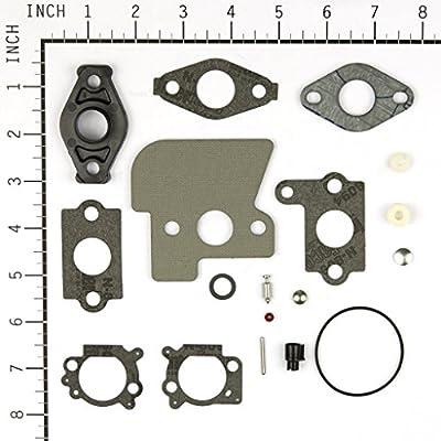 Briggs & Stratton 792383 Carburetor Overhaul Kit: Garden & Outdoor