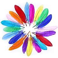 Frmarche - 60 Plumas Grandes de Colores Naturales