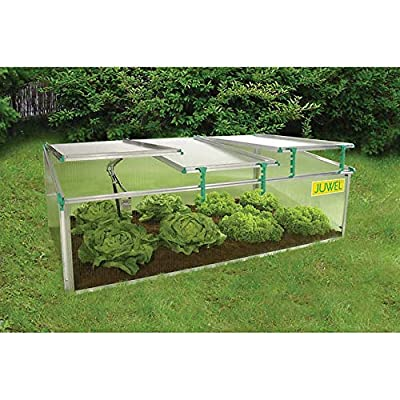 Biostar Expect More 1500 Premium Cold Frame from EVAXO