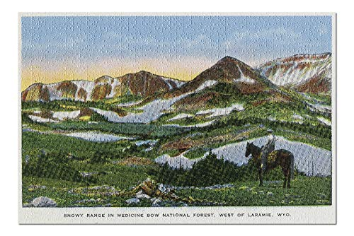 - Medicine Bow National Forest, WY - Snowy Range View West of Laramie, Man on Horseback (20x30 Premium 1000 Piece Jigsaw Puzzle, Made in USA!)