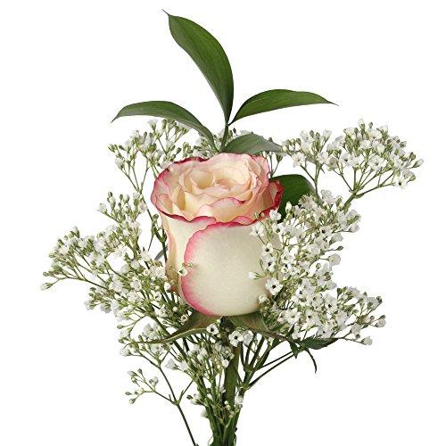 60 Single Sweetness Roses by Vistaflor Fresh Flowers