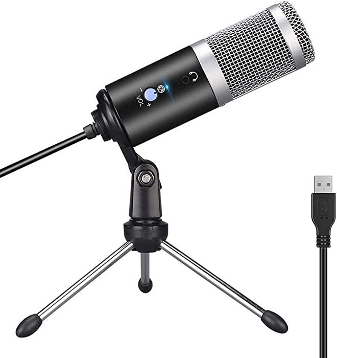 The Best  Seller Home Recording Mic