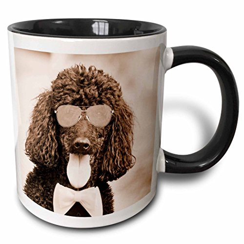 3dRose mug 218220 4 wearing sunglasses Popular