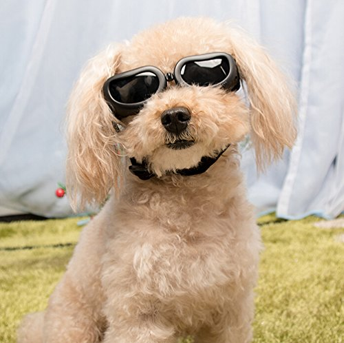 0d54ae2be71b6 Dog Sunglasses