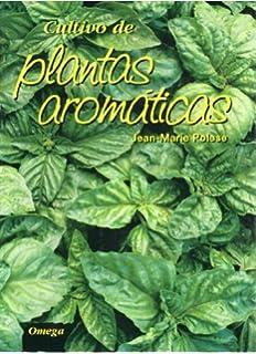Guía breve de plantas aromáticas de la España peninsular: Amazon ...