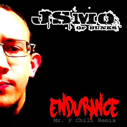 Endurance (Mr. P Chill Remix)