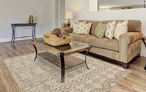 PRIYATE Florida Collection - All Weather Indoor/Outdoor Boho Chic Rug for Living Room, Bedroom, and Dining Room(5