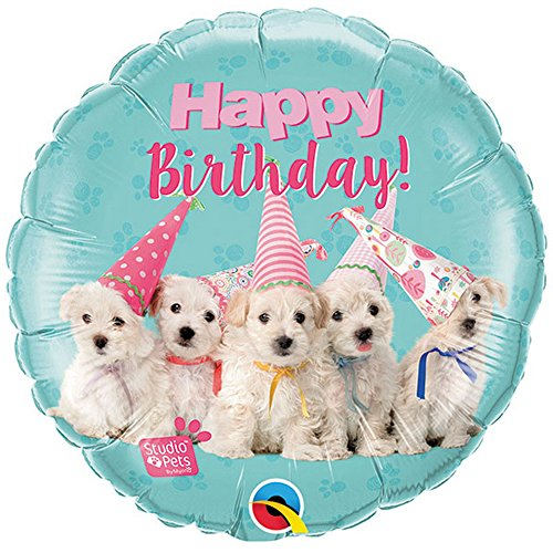 Qualatex 57620 Studio Pets Happy Birthday Puppies 18 Inch Foil Balloon]()
