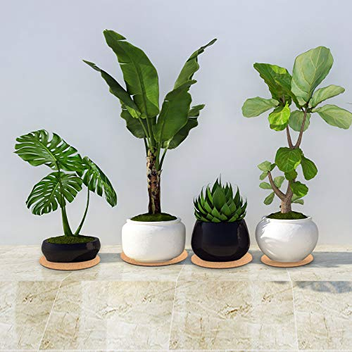 6 Inches, 8 Inches, 10 Inches Indoor and Outdoor Pots 3 Pieces Cork Plant Mat Round Cork Plant Coasters DIY Cork Pad Plant Plate Pad for Gardening DIY Craft Project