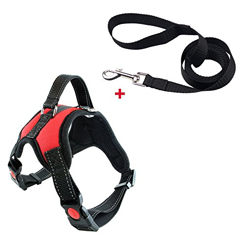 Bwogue Harness Handle Adjustable Chest product image