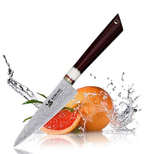 MSY BIGSUNNY 3.9'' Fruit Knife - Damascus Kitchen Slicing Knife - Super Damascus Stainless Steel Cutting Core Blade - Raindrop Damascus Pattern - Big Leaf Sandalwood Handle ()