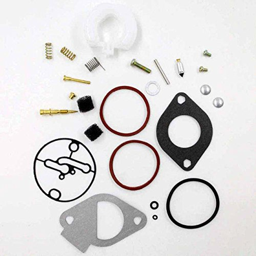 jahyshow carburador Rebuild Kit para Briggs & Stratton 796184 - Master revisión, Nikki Carbs sustituye 698787 790032 699900 699521 792369 cortacésped: ...