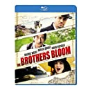 The Brothers Bloom [Blu-ray]