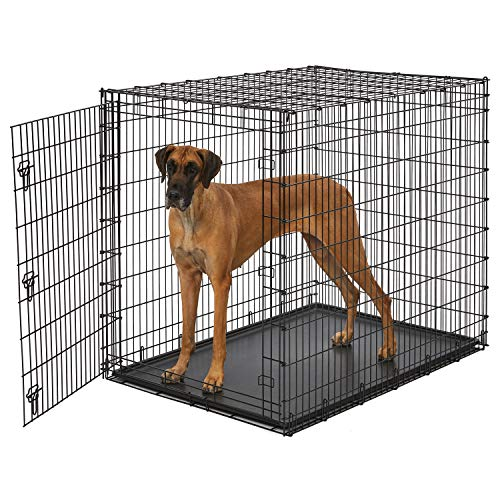 "MidWest Homes for Pets Ginormous 54"" Single Door Giant Dog Crate from MidWest Homes for Pets"
