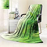 YOYI-HOME Digital Printing Duplex Printed Blanket Bamboo Stalks Reflection On Water Blurs Freshness Japanese Decorative Zen Spa Summer Quilt Comforter /W69 x H47