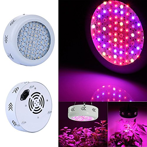 Top 10 Best Ufo Led Grow Lights Reviews 2019 2020 On