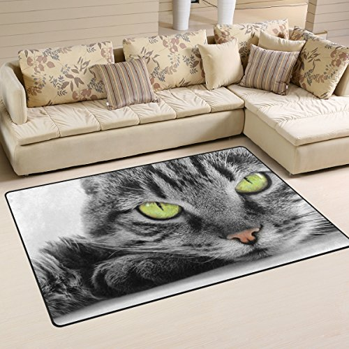 Naanle Animal Area Rug 3'x5′, Green Eyed Cat Polyester Area Rug Mat for Living Dining Dorm Room Bedroom Home Decorative Review
