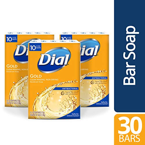Dial Antibacterial Bar Soap, Gold, 30 Count (Best Antibacterial Bath Soap)