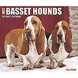 Just Basset Hounds 2017 Box Calendar (Dog Breed Calendars)