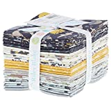 Deena Rutter Fossil Rim 21 Fat Quarters Riley Blake Designs FQ-6610-21