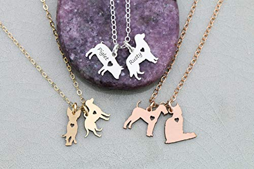 Pets Necklace- IBD - Dog Cat Animal Charm- 935 Sterling Silver 14K Rose Gold Filled - 3/4 Inch 19.05 MM- Fast 1 Day Production