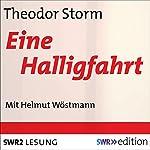 Eine Halligfahrt | Theodor Storm