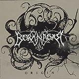 Origin by Borknagar (2011-08-03)