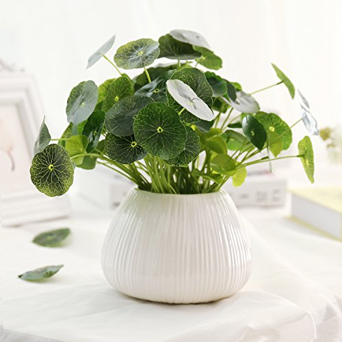 MyGift Modern Ribbed 3.5-Inch Ceramic Succulent Planter Pot, Ivory White ()